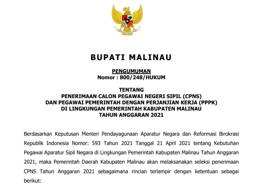 pengumuman-penerimaan-cpns-dan-pppk-malinau-2021